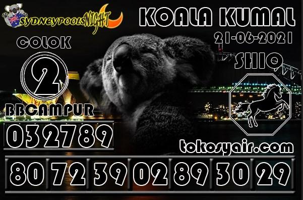 messageImage_1624134353714.jpg