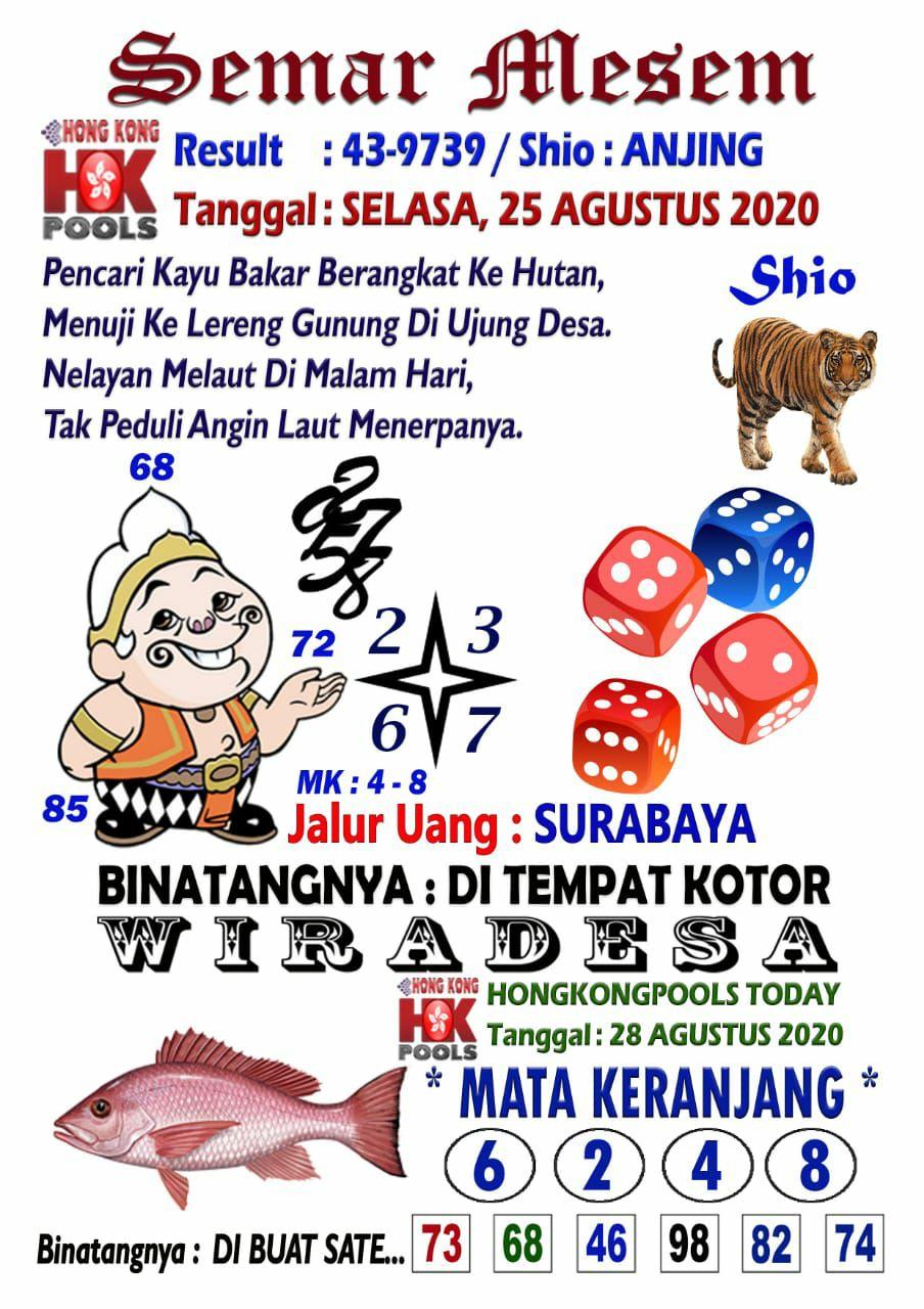 d60efa99-b0ee-4cfc-97f1-e59064a1d440.jpg