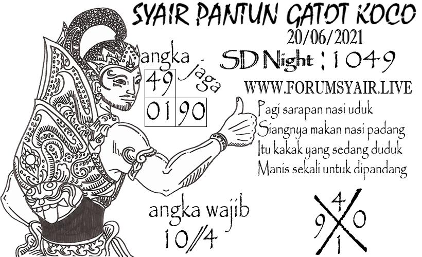 SD%20NIGHT_0.jpg