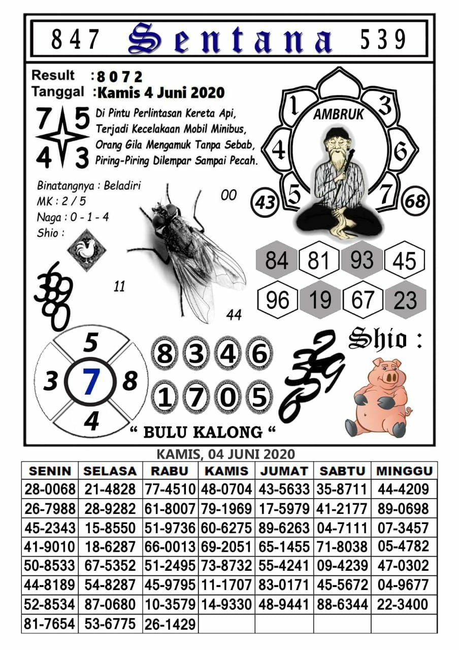 b26b7333-8e1a-4cc8-865a-9533cee54716.jpg