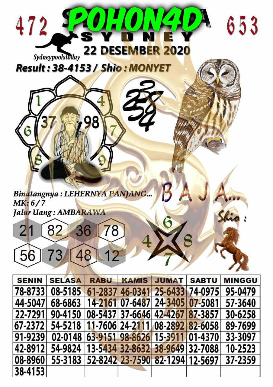 2b160cee-7fab-4118-951a-c1ac4875ad74.jpg