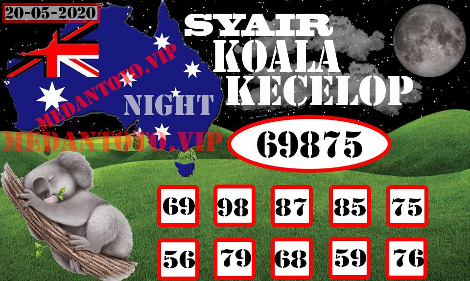 SYAIR KOALA KECELOP20 .jpg (960×574)