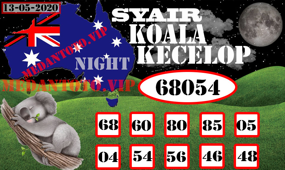 SYAIR KOALA KECELOP 13 Recovered.jpg (960×574)