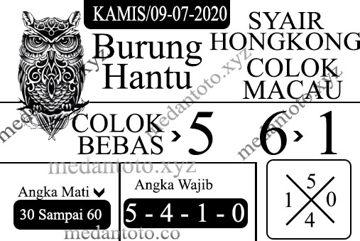 burung hantu newHK -09 Recovered.jpg (507×339)