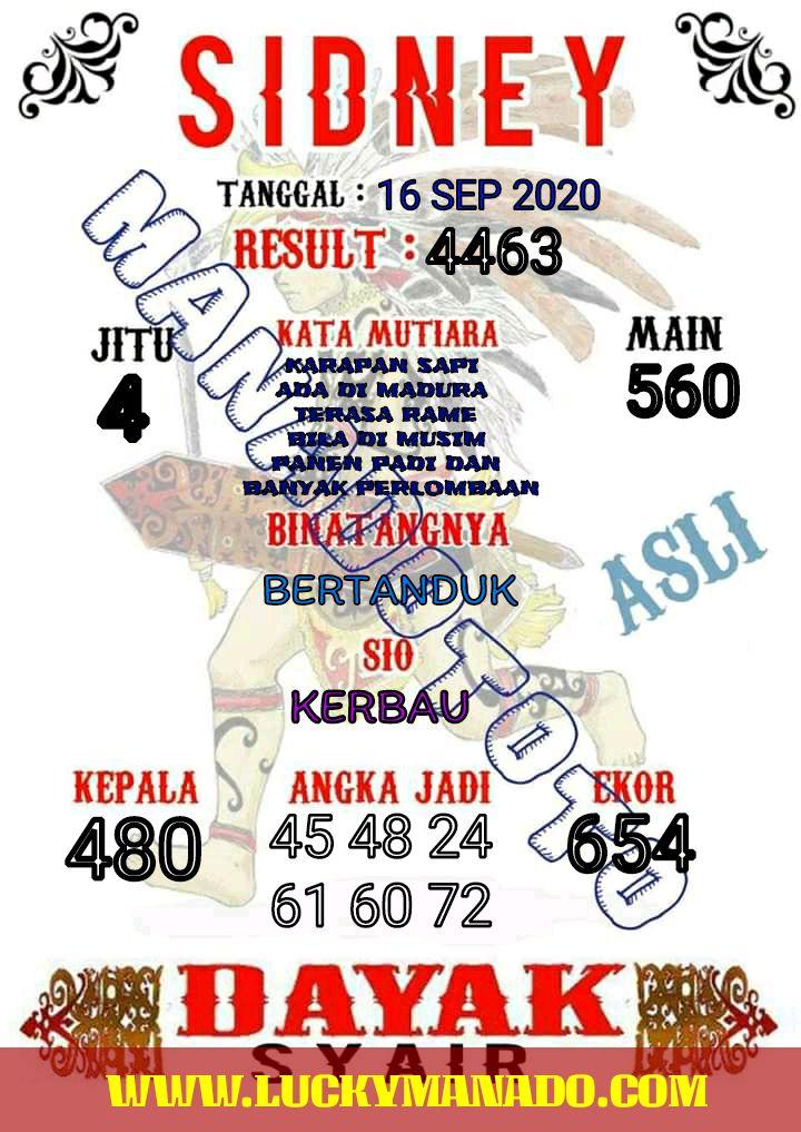 9b341ae0-df84-4eba-bd19-7e23057786ff.jpg