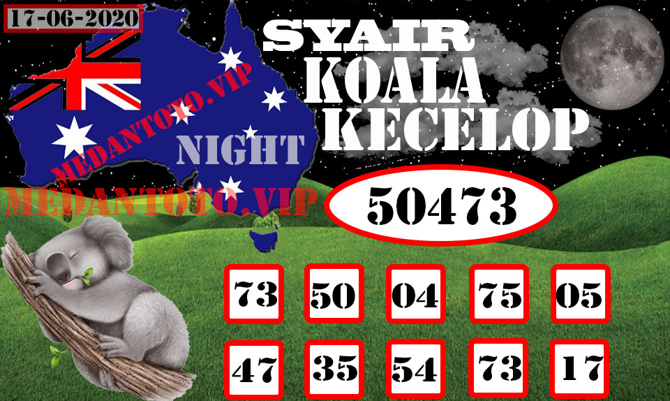 SYAIR KOALA KECELOP 17 Recovered-Recovered.jpg (960×574)