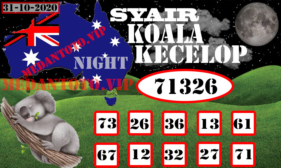 SYAIR%20KOALA%20KECELOP-Recovered.jpg