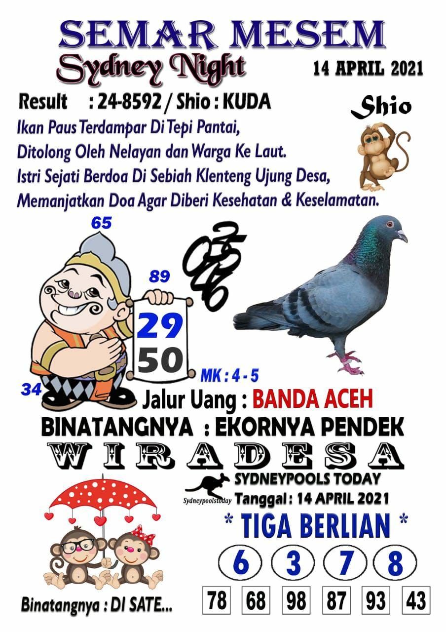 5e908090-ebcd-4baa-9859-21a9681676d9.jpg