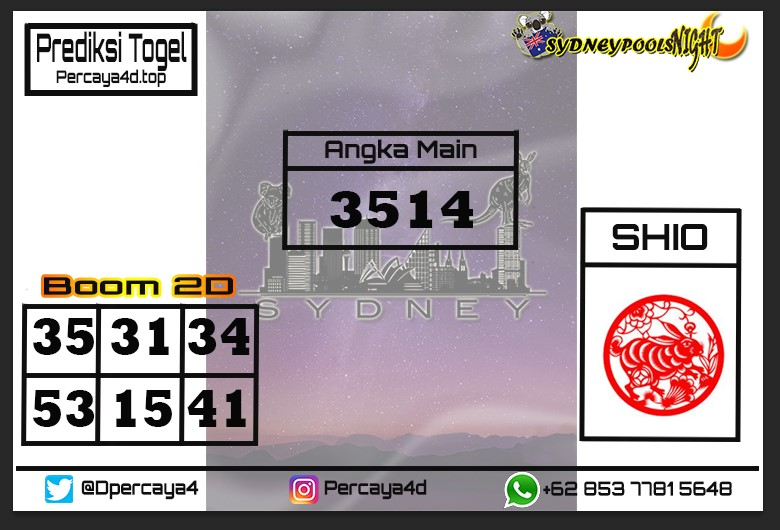 sdynight%2012.jpg