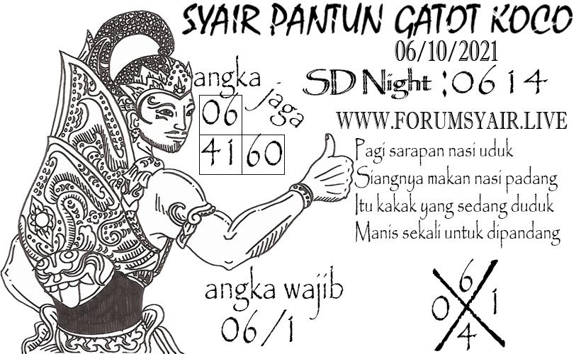 SD%20NIGHT%2006.jpg