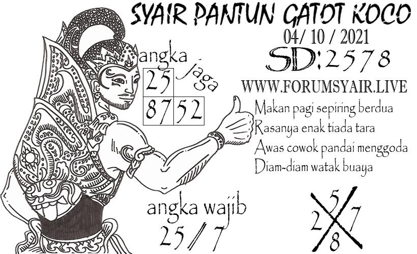 SD%20123.jpg