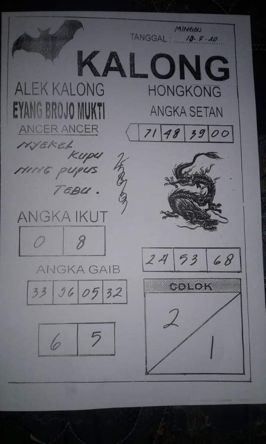 kalong.jpg (538×896)