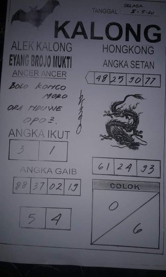 kalong.jpg (540×900)